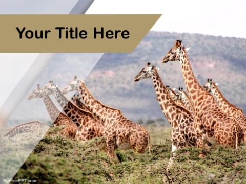 Free Giraffes PPT Template