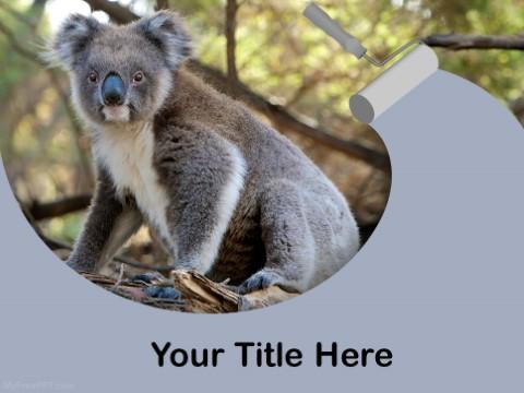 Free Koala Bear PPT Template