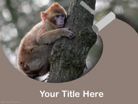 Free Monkey PPT Template