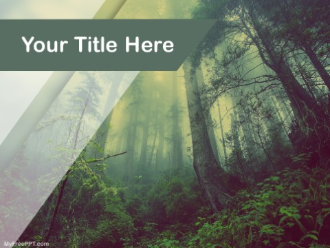 free rain forest ppt template download free powerpoint ppt