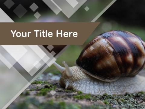Free Slug PPT Template