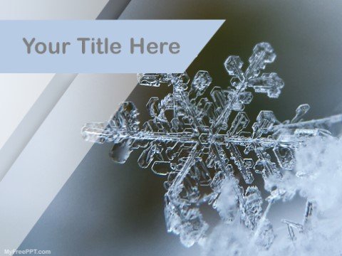 Free Snow Flakes PPT Template