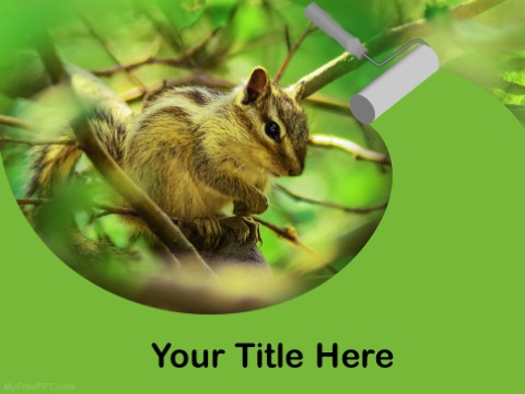 Free Squirrel PPT Template