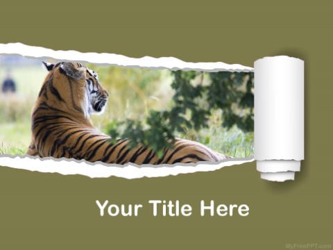 Free Tiger PPT Template