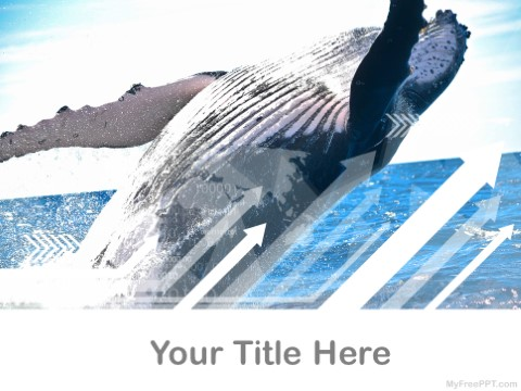 Free Whale PPT Template