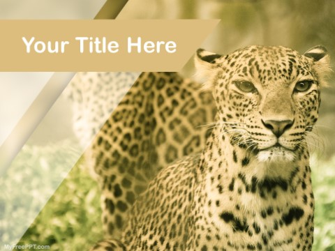 Free Wild Cats PPT Template