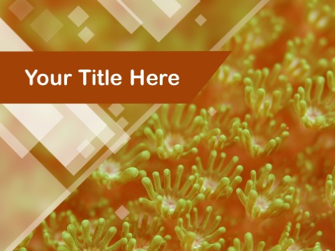 Free Yellow Coral Field PPT Template