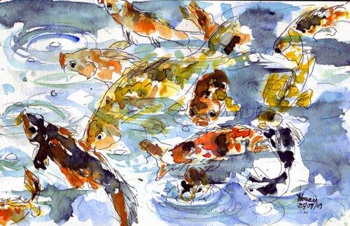 hawaii koi fish 10-2-2009 7-19-50 PM