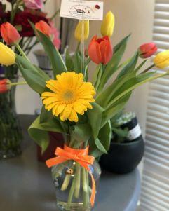 Tulips, Daisies