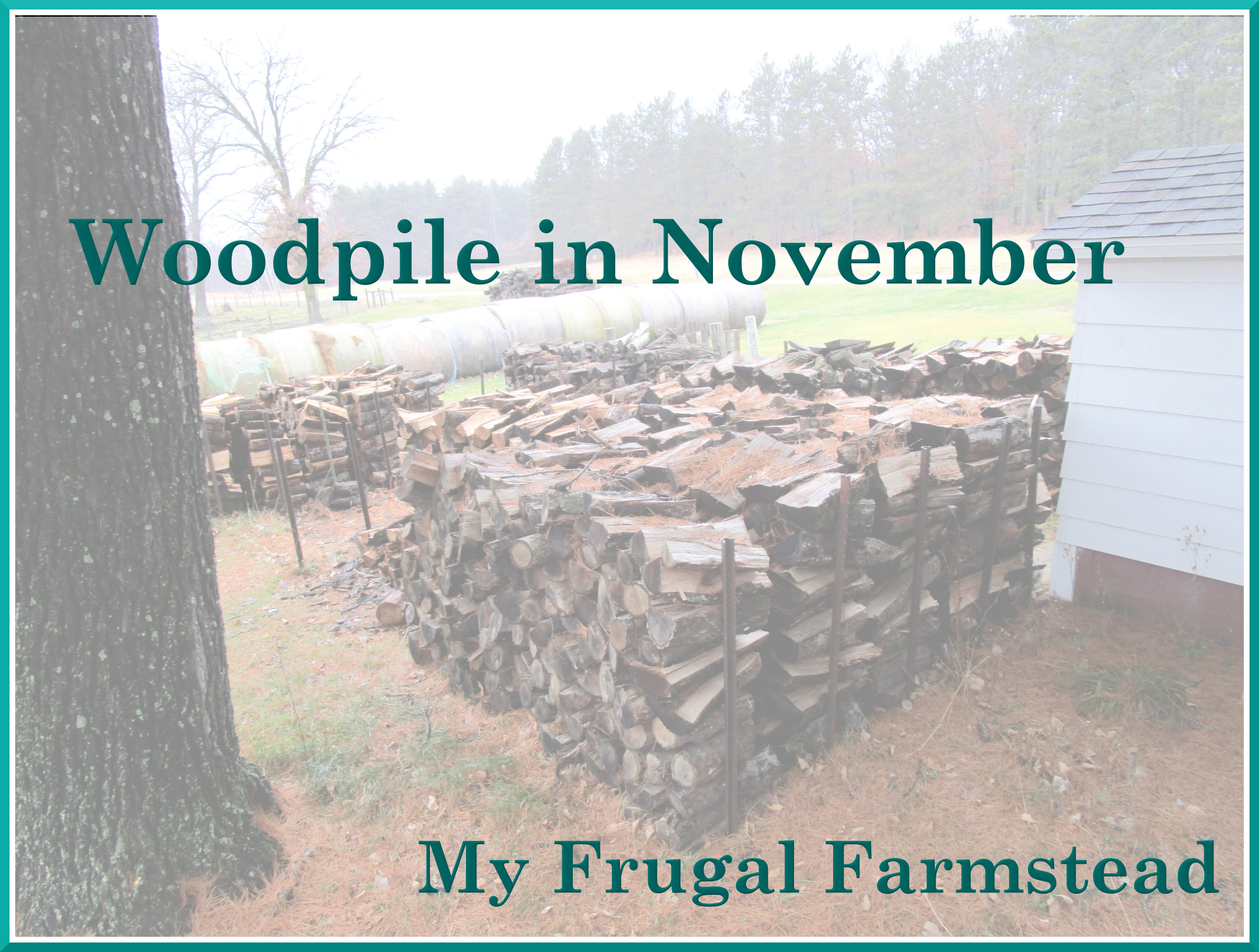 Woodpile in November