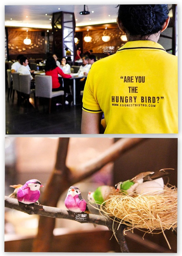 Are You The Hungry Bird