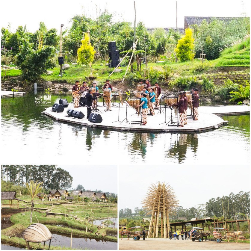 Danau Kecil di Dusun Bambu