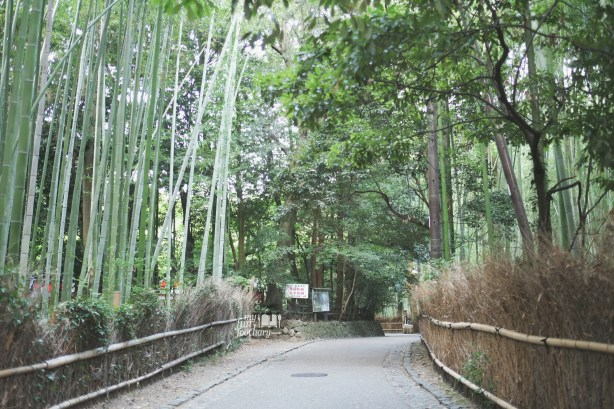 Path to Arashiyama Bamboo Grove by Myfunfoodiary