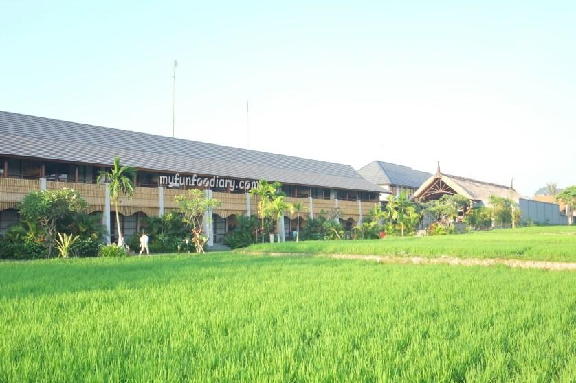 View From The Paddy Field to Alaya Resort Ubud by Myfunfoodiary