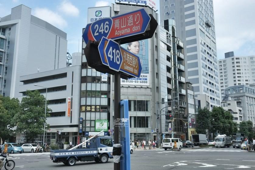 Aoyama Dori at Tokyo Japan by Myfunfoodiary