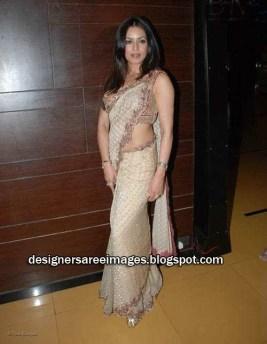 bollywood-actress-mahima-chaudhary-in-saree_designersareeimages-blogspot-com_002