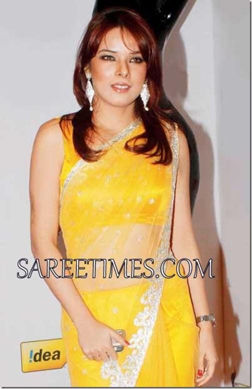 udita_goswami_yellow_saree_thumb2