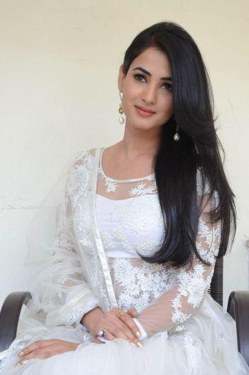 Actress Sonal Chauhan Hot Photos