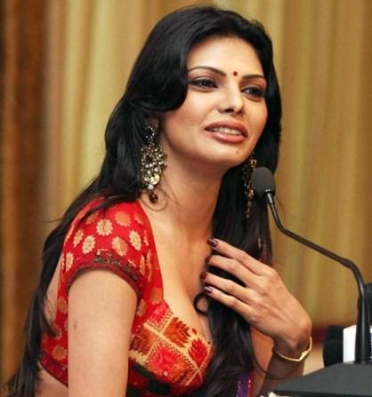 indian-glamour-actress-sherlyn-chopra-hot-saree-photos_650