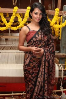 anita-hassan-andani-hot-saree-stills-at-an-ode-to-weaves-weavers-fashion-show-1