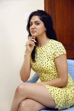 sakshi-chaudhary-in-yellow-dress-july-2015-stills-8661