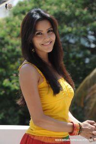Actress-Priya-Anand-2010-Photos-(73)4591