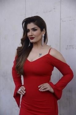actress-raveena-tandon-hot-in-red-dress-photos-2260147