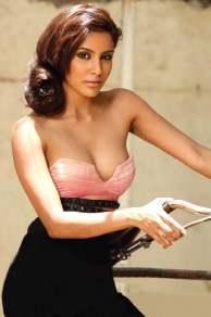 Priya_Anand_Exclusive_Hot_Stills (38)