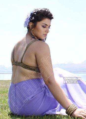 hansika-motwani-hot-pose-hot-saree-05e227618d7aec85e9cdd9e29fa8eccd-large-736257