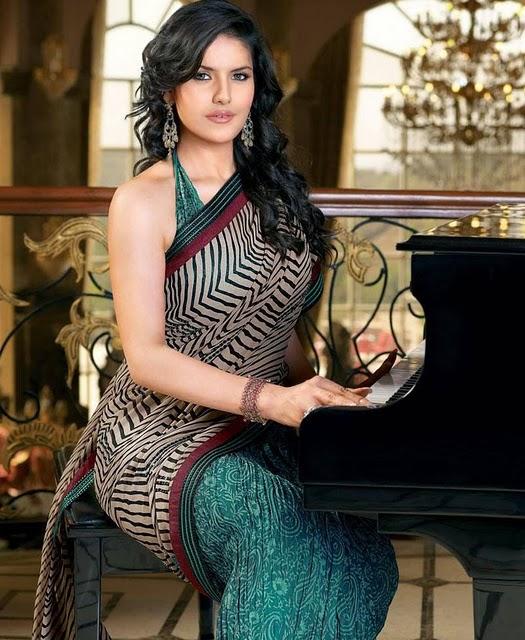hot-zarine-khan-saree1