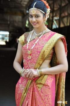 rakul preet singh in beautiful saree wallpapers 6
