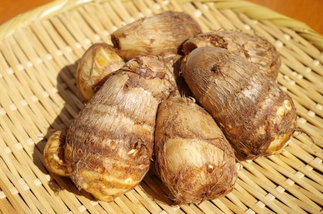 サトイモの特徴と育て方