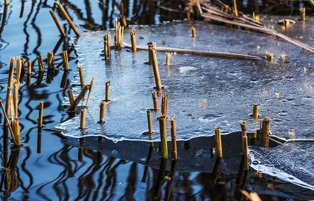 雪解け水と連日の雨で洪水の被害も…