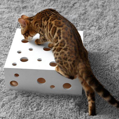 развивающая игрушка для кошки