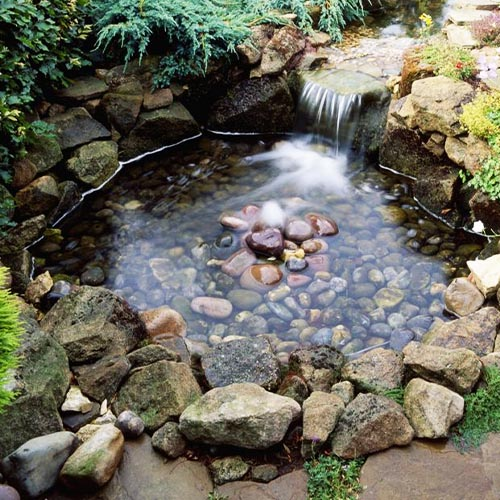 How to Drain a Garden Pond