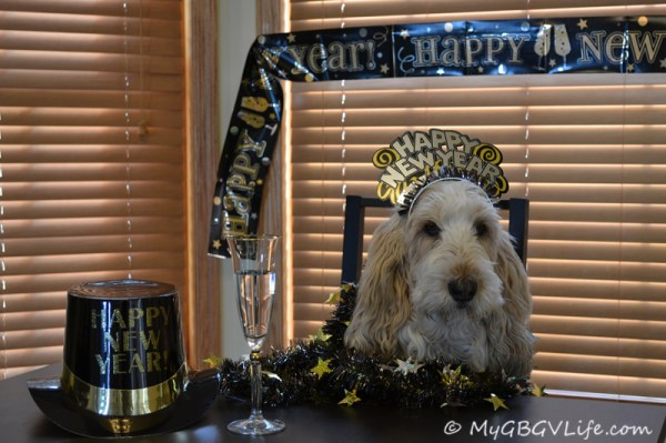 Happy New Year! Welcome 2013!