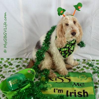 St. Patrick's Day 2013 | GBGV