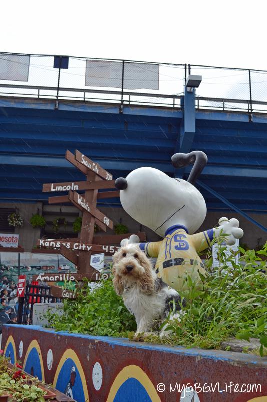 GBGV Saints Snoopy