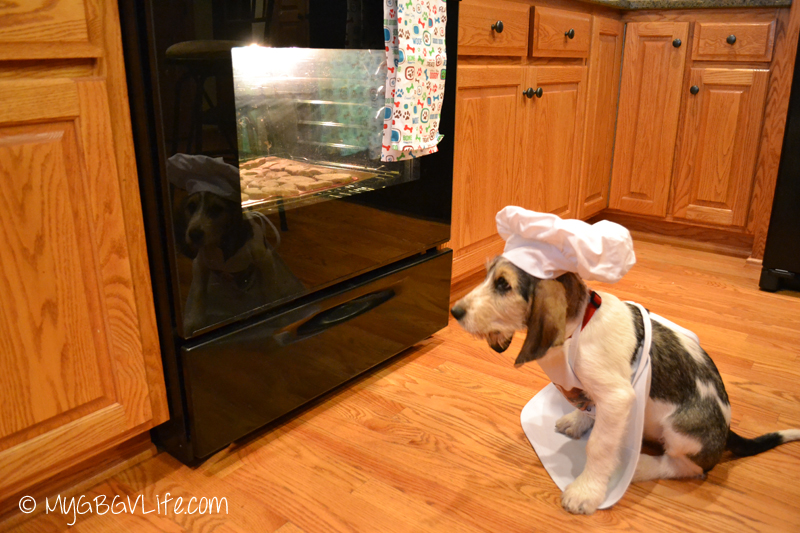 GBGV Bailie watching the oven
