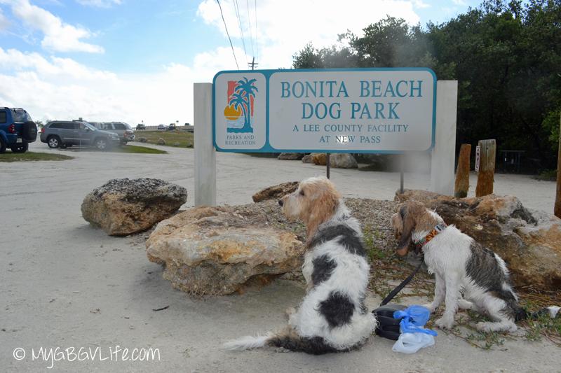 My GBGV Life Bonita Beach Dog Park