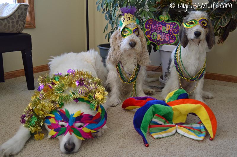 My GBGV Life Mardi Gras Family