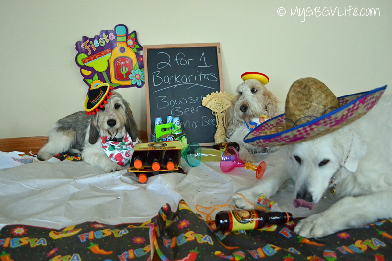 My GBGV Life Katie Bailie and I at our Fiesta