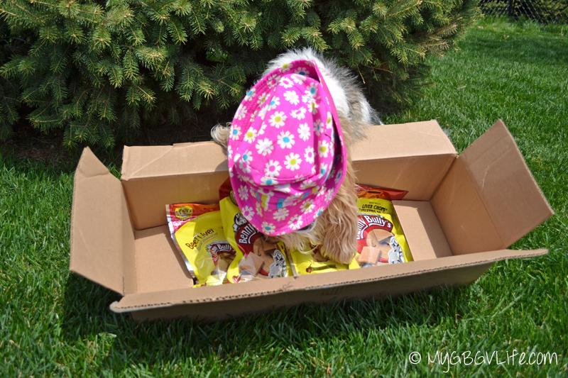 My GBGV Life Benny Bullys liver treats in the box