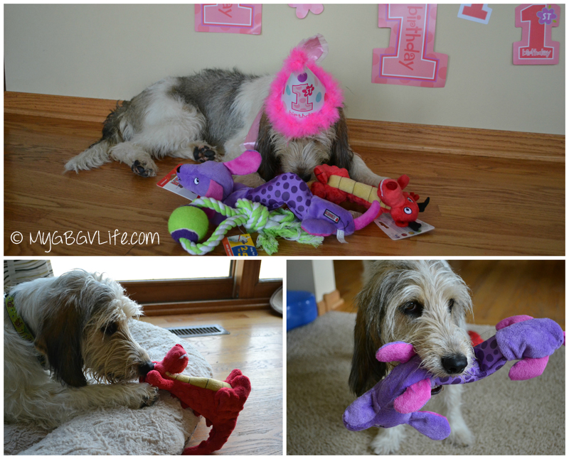 My GBGV Life with new toys for her first birthday