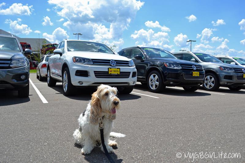 My GBGV Life car shopping at Burnsville Volkswagen