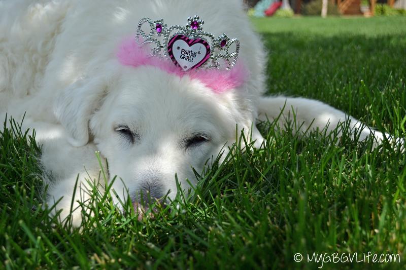 My GBGV Life 12th birthday girl napping