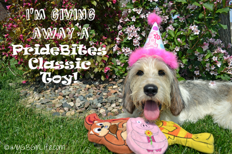 My GBGV Life first birthday giveaway of a PrideBites toy