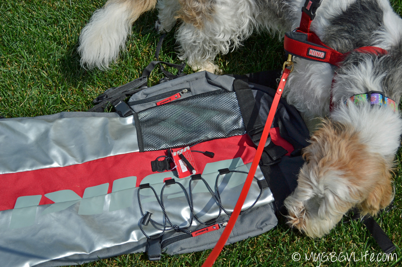 My GBGV Life K9 Kamp nose work searching backpack