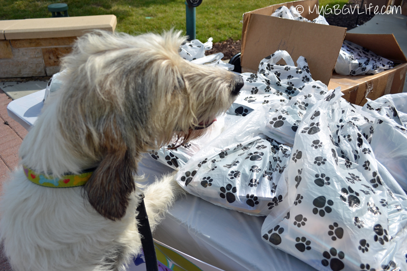 My GBGV Life getting woofstock goodie bag