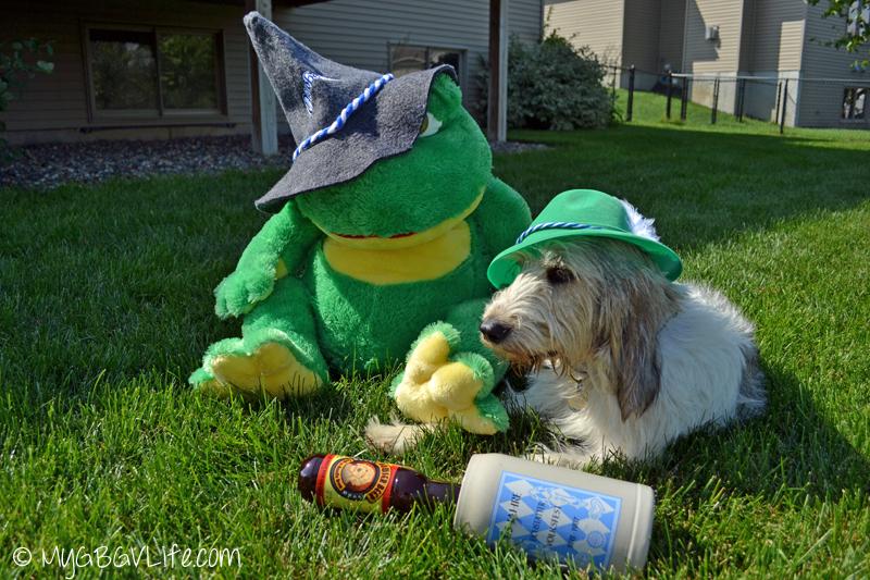My GBGV Life Bailie with Oktoberfest frog